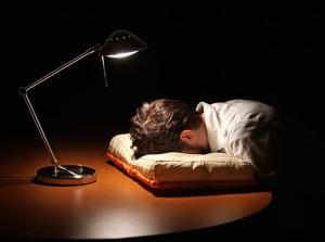 Cuscino a Forma di Libro