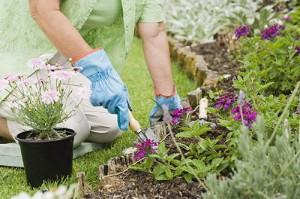 regali giardino orto fiori